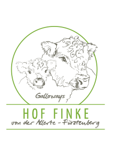 Gallowayzucht Finke Logo