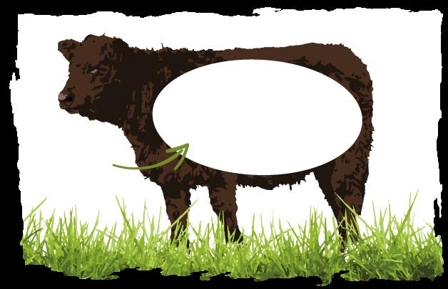 Abbildung welche Schicht für Bratwurst und Hackfleisch